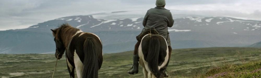 o-koniach-i-ludziach-6